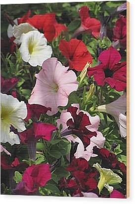 A Plethora Of Petunias Wood Print