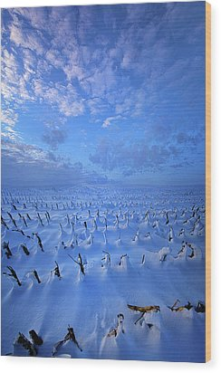 Wood Print featuring the photograph A Quiet Light Purely Seen by Phil Koch