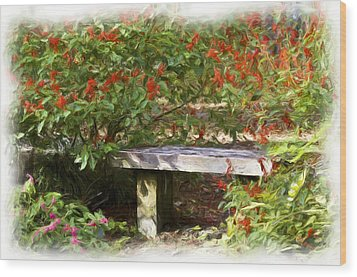 A Quiet Place Wood Print by Carolyn Marshall