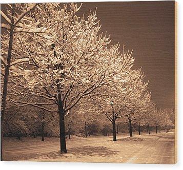 A Quiet Snowy Night Wood Print by Jackie Reitsma