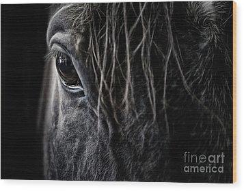 A Race Horse Named Tikki Wood Print
