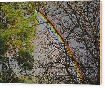 A Rainbow Tree Wood Print by Ben Upham III
