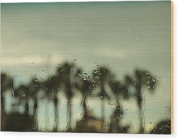 A Rainy Day Wood Print by Christopher L Thomley