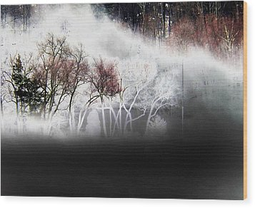 Wood Print featuring the photograph A Recurring Dream by Steven Huszar