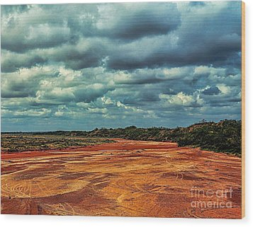 Wood Print featuring the photograph A River Of Red Sand by Diana Mary Sharpton