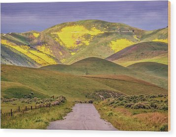 Wood Print featuring the photograph A Road Less Traveled by Marc Crumpler