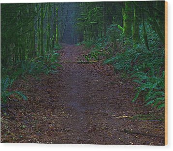 A Road Less Traveled Wood Print by Steve Battle