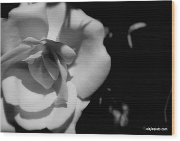 Wood Print featuring the photograph A Rose by Lois Lepisto