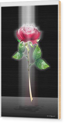 A Rose Wood Print by William R Clegg