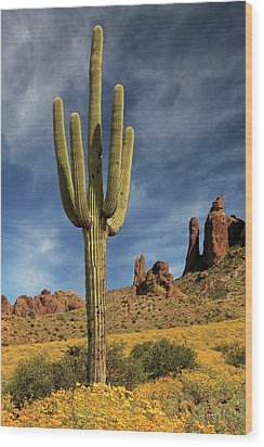 Wood Print featuring the photograph A Saguaro In Spring by James Eddy