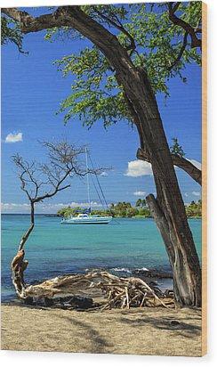 A Sailboat In Anaehoomalu Bay Wood Print by James Eddy