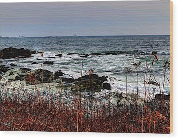 Wood Print featuring the photograph A Shoreline In New England by Tom Prendergast