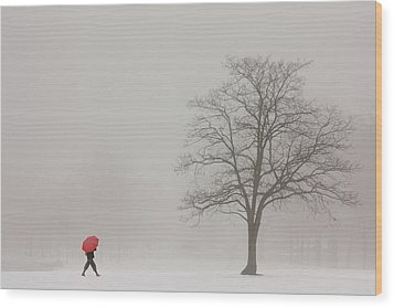 A Shortcut Through The Snow Wood Print by Tom York Images