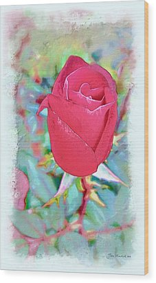 Wood Print featuring the photograph A Single Rose In October by Joan  Minchak
