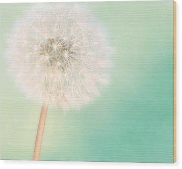A Single Wish II Wood Print by Amy Tyler
