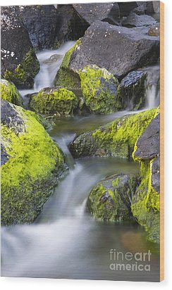 A Small Stream Wood Print by Tim Grams