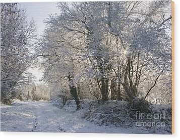 A Sparkling Winter Day Wood Print by Sophie De Roumanie