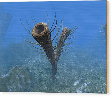 A Species Of Pirania, A Primitive Wood Print by Walter Myers