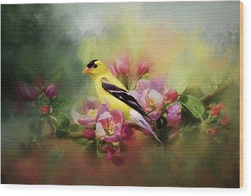 A Splash Of Joy Bird Art Wood Print
