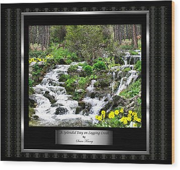Wood Print featuring the photograph A Splendid Day On Logging Creek by Susan Kinney