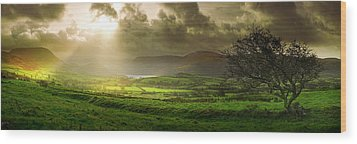 Wood Print featuring the photograph A Spot Of Sunshine by John Chivers