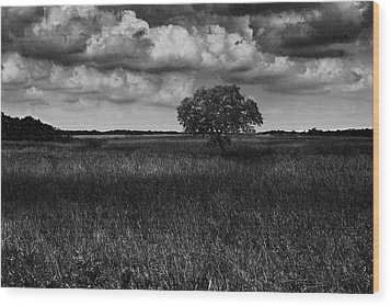 A Storm Is Coming To Wyoming Grasslands Wood Print by Jason Moynihan