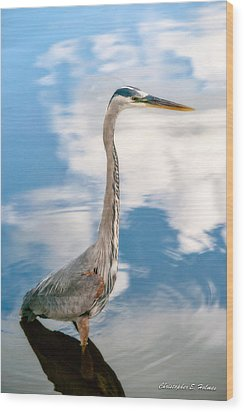 Wood Print featuring the photograph A Stroll Among The Clouds by Christopher Holmes