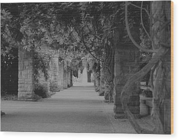 A Stroll Under The Vines Bw Wood Print by Lynnette Johns