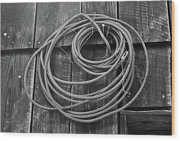 A Study Of Wire In Gray Wood Print by Douglas Barnett