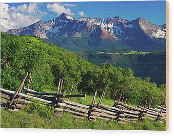 Wood Print featuring the photograph A Summer In Telluride by John De Bord