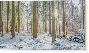Wood Print featuring the photograph A Sunny Day In The Winter Forest by Hannes Cmarits