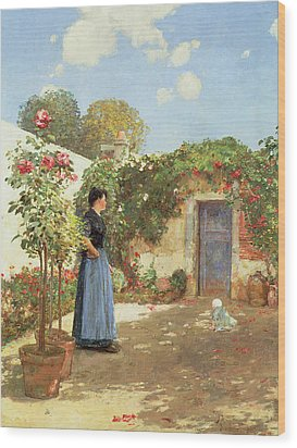 A Sunny Morning Wood Print by Childe Hassam