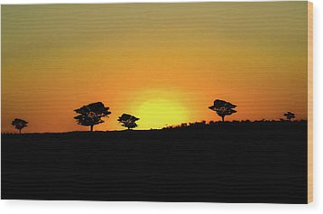 A Sunset In Namibia Wood Print by Ernie Echols