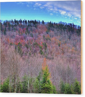 Wood Print featuring the photograph A Touch Of Autumn by David Patterson