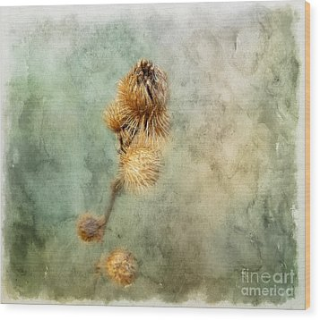 A Touch Of Beauty Wood Print by Brenda Bostic