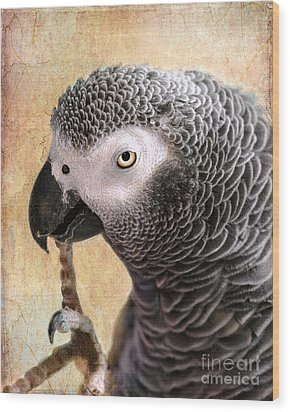 Wood Print featuring the photograph A Touch Of Grey 11 by Betty LaRue