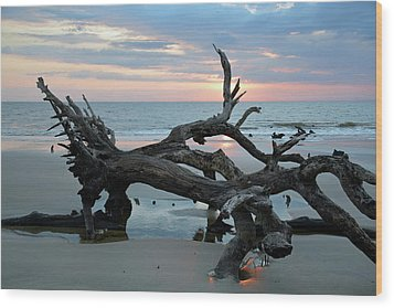 A Touch Of Morning Glory Wood Print by Bruce Gourley