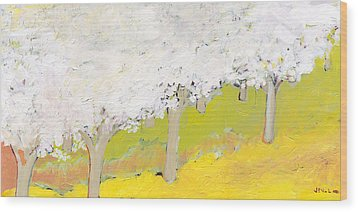 A Valley In Bloom Wood Print by Jennifer Lommers