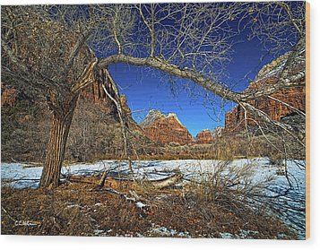 A View In Zion Wood Print by Christopher Holmes