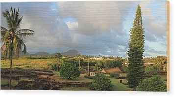 A View Of Prince Kuhio Park Wood Print by Bonnie Follett