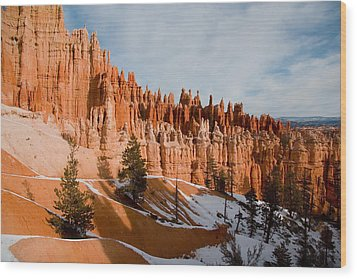 A View Of The Hoodoos And Other Eroded Wood Print by Taylor S. Kennedy
