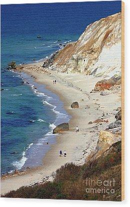 A Walk Along Aquinnah Beach Wood Print by Carol Groenen