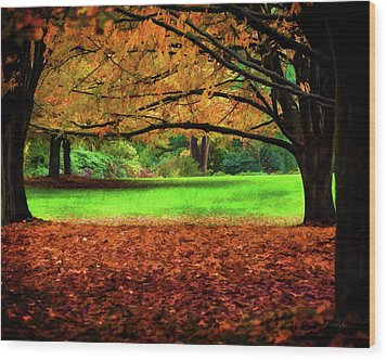 A Walk In The Park Wood Print by Jordan Blackstone