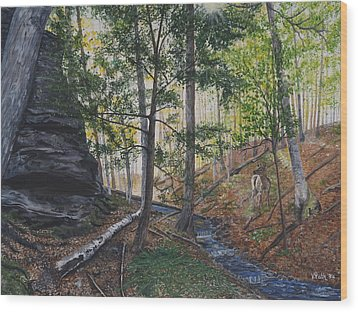 A Walk In The Woods Wood Print by Vicky Path