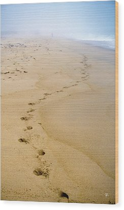 Wood Print featuring the photograph A Walk On The Beach by Tom Romeo