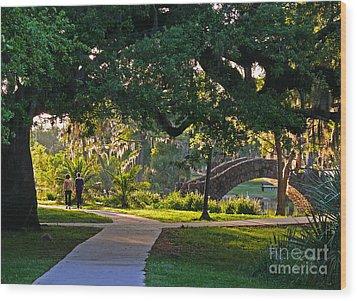 A Walk Though The Park Wood Print