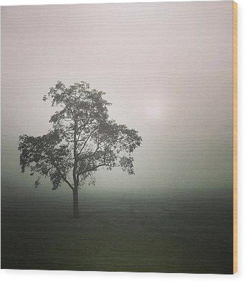 A Walk Through The Clouds #fog #nuneaton Wood Print by John Edwards