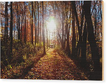 Wood Print featuring the photograph A Walk To Grandma's by April Reppucci