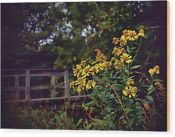 Wood Print featuring the photograph A Walk With Wildflowers by Jessica Brawley