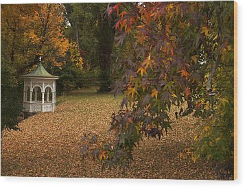 A Washington Crossing Autumn Wood Print by Elsa Marie Santoro